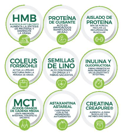 ingredientes-mealnight-nutripharma-02